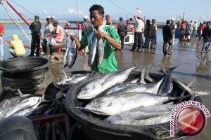 Hasil Tangkapan Ikan Nelayan Bangka Tengah Merosot