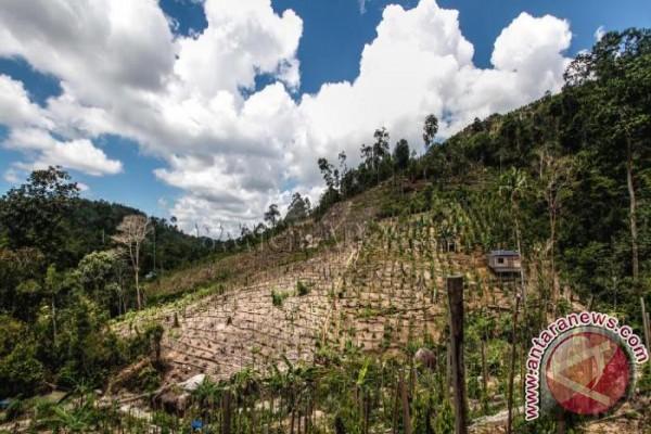 Pemkab Bangka Tengah Inventarisasi Kawasan Hutan Mangkol