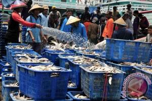 Bangka Tengah Diproyeksikan Jadi Sentra Ikan Segar