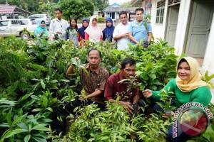 PT Timah Bantu Desa Riau 1.000 Bibit Buah