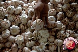 Pedagang Keluhkan Pasokan Bawang Putih Sering Kosong
