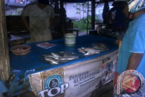 Masyarakat Pangkalpinang Keluhkan Harga Ikan Belum Juga Turun