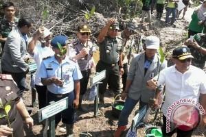Gubernur Erzaldi Minta Warga Jaga Kawasan Hutan Mangrove