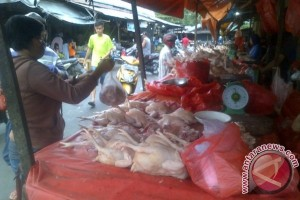 Harga Daging Ayam di Kabupaten Bangka Tengah Naik