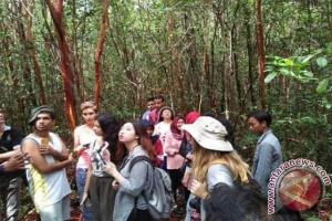 AIESEC Tertarik Teliti Hutan Pelawan di Kabupaten Bangka Tengah