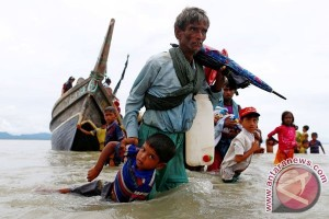 Senator Desak Trump Bertindak Soal Muslim Rohingya