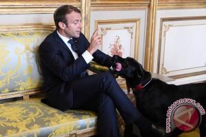 Popularitas Presiden Prancis Emmanuel Macron Membaik