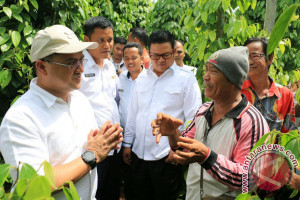 Gubernur Bangka Belitung Sebagai Provinsi Sentra Lada Putih