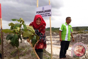 PT Taspen Pangkalpinang tanam 5.000 bibit pohon di Belitung Timur