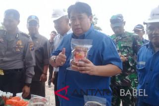 PT Timah tingkatkan bantuan kembangkan UMKM