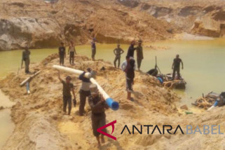 Satpol PP tertibkan tambang ilegal di Pangkalpinang