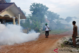 DKPPKB Belitung Timur catat tujuh kasus DBD