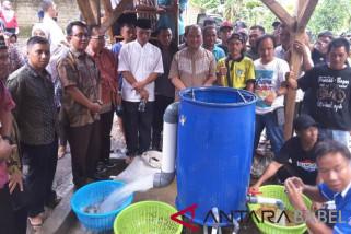 Gubernur Babel motivasi petani lada Desa Petaling