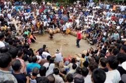 Foto Perubahan Sosial Budaya Bali Dipamerkan