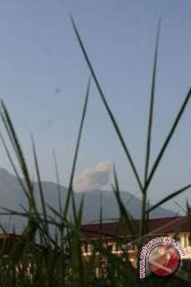 Gunung Marapi Semburkan Abu