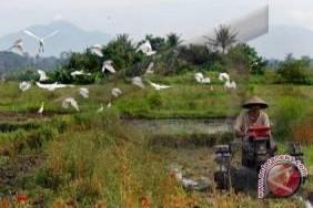 Dewan Dukung Rencana Badung Kembangkan Teknologi Pertanian