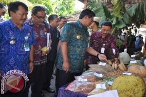 Bali Meraih Tiga Penghargaan Lomba Desa 2017