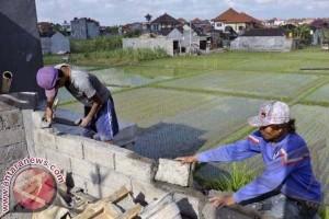 Kehancuran Subak Pengaruhi Kehidupan Bali