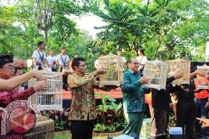 "Bali Zoo Gelar ""Jungle Festival"""