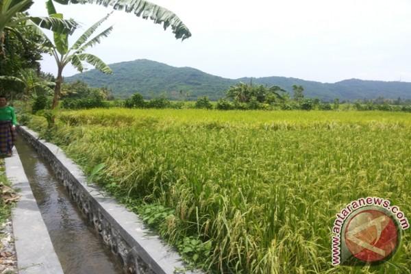 Pemprov Bali Minta HKTI Dorong Pertanian-Ekonomi