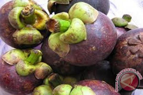 Tiongkok izinkan lagi Indonesia ekspor manggis