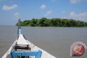 Senandung Kepak Camar di Pulau Sarinah