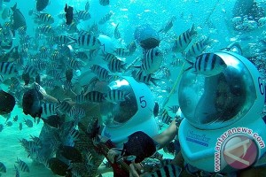Pemuteran Andalkan Wisata Bahari Berbasis Konservasi