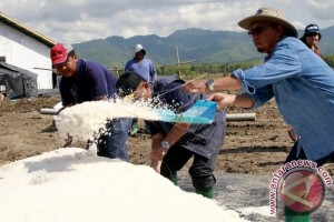 Indonesia's Salt Production Falls Short Of Target