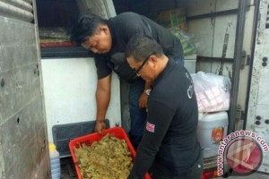 Polisi Amankan Lima Kwintal Daging Tanpa Dokumen