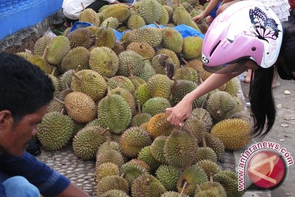 Jembrana tertibkan pedagang durian lewat festival