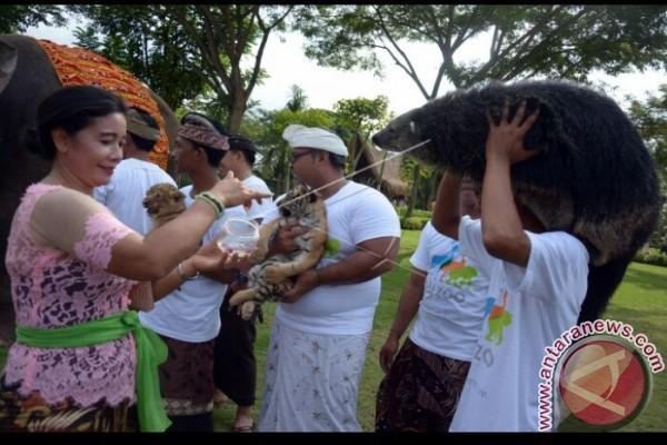Bali Zoo Tambah Koleksi Satwa Langka