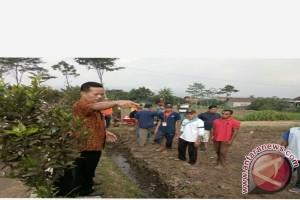 Penyuluh Pertanian Bali Pelajari Teknologi BBPP Malang