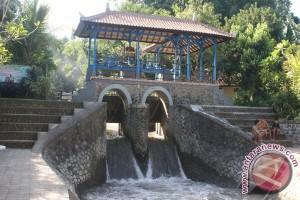 Wisata Burung Hantu di Tukad Bindu
