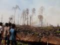 Kebakaran Lahan Gambut Aceh Barat