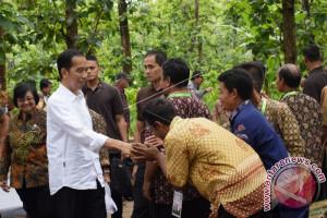 Presiden Jokowi ke Dungus Meninjau Perhutanan Sosial