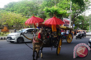 Dozens of tourists enjoy free horse-drawn vehicle in Denpasar