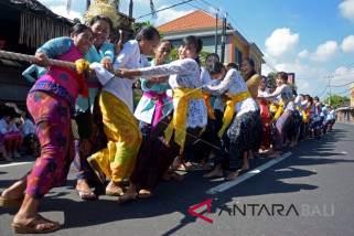 Pasca-Nyepi, ibu-ibu di Badung-Bali ikuti Tradisi 'Mbed-Mbedan' (video)