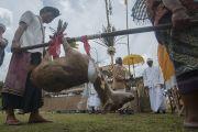 Di Besakih, umat Hindu ikuti