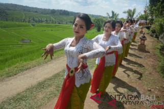 Wagub Bali: Festival Jatiluwih ceritakan tradisi pertanian masyarakat (video)