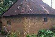 Rumah adat Baliaga Buleleng tersisa 30 unit