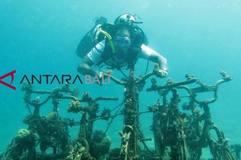 Indonesia-Monako kerja sama konservasi terumbu karang