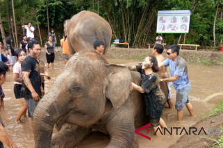 Bali Zoo presents activity of
