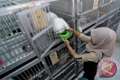 "PDHI Selenggarakan ""Indo Pet Expo 2015"""