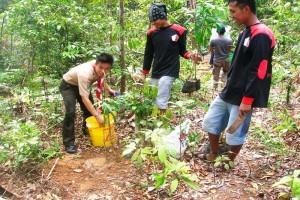 Petani Lebak Lakukan Reboisasi Penghijauan Bantaran Sungai