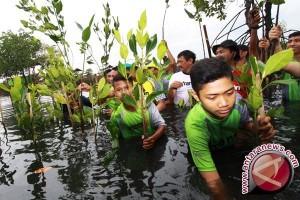 Dishutbun Banten Fokus Lestarikan Hutan Dan Lahan