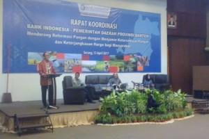 BI: Kontribusi Sektor Pertanian Banten Perlu Ditingkatkan