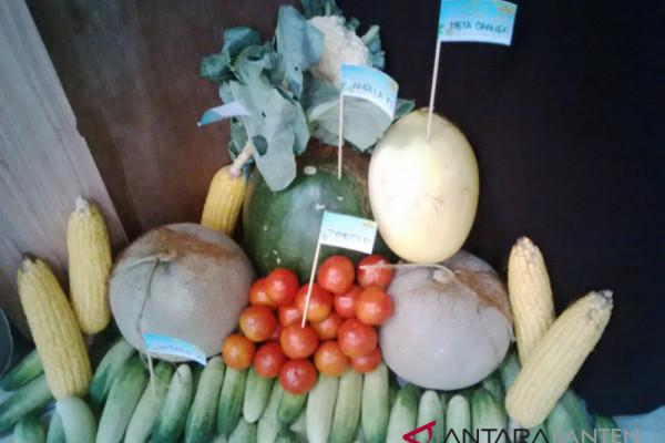 Konsumsi Sayuran Dan Buah Masyarakat Masih Kurang