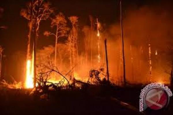 BPBD Lebak Keluarkan Peringatan Bahaya Kebakaran