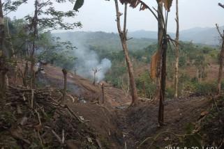 Petani Badui Mulai Bercocok Tanam Ladang