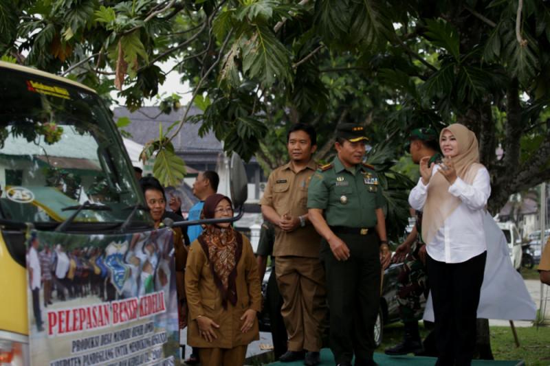 Pandeglang Suplai Benih Kedelai Ke Serang dan Lampung